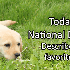 Writing Prompt for August 26: National Dog Day!