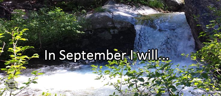 Featured_Journal_Sept115Week