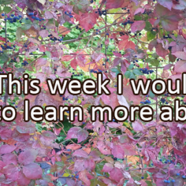 Writing Prompt for October 5: Learning This Week