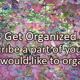 Writing Prompt for October 6: Get Organized Week