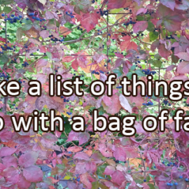 Writing Prompt for October 7: Bag of Leaves