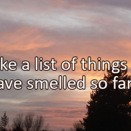 Writing Prompt for November 5: Smells