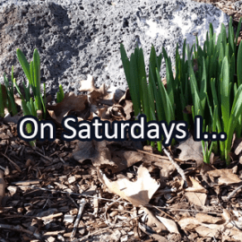 Writing Prompt for March 3: Saturdays