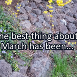 Writing Prompt for March 29: March