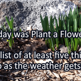 Writing Prompt for March 13: Plant a Flower