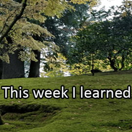 Writing Prompt for November 22: Learned This Week
