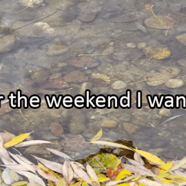Writing Prompt for November 8: Weekend