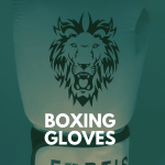 Premium Boxing Gloves