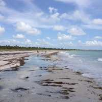 6/14/13, #FortMyersFishing #FloridaFishing: Fort Myers Fishing Report ~ Cayo Costa, great shelling after Tropical Storm Andrea