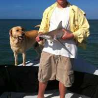 11/11/13, Fort Myers Fishing Report: Blacktip Shark, North Captiva ~ #FortMyersFishing