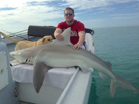 Bull Shark, 1-15-14, Fort Myers Fishing Report & Charters ~ #FortMyersFishing.