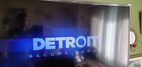 برای آن دسته از شما که بچه های PlayStation دارید ، این ماه یک بازی رایگان به نام دیترویت دارد. هدف از تبدیل شدن به ...
