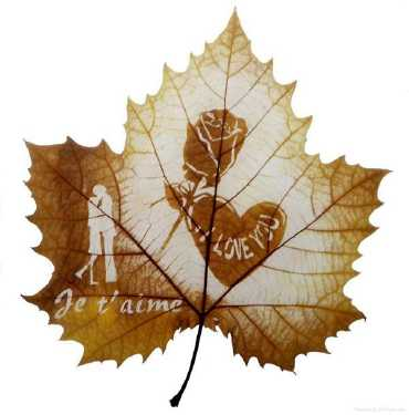 art on leaf 1