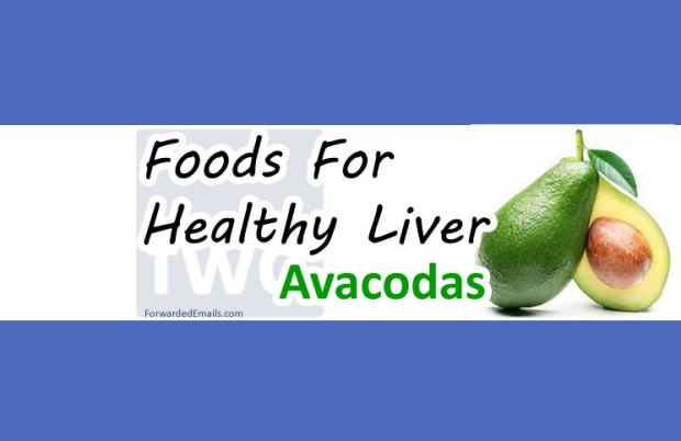 foods-to-eat-for-a-healthy-liver-avacoda