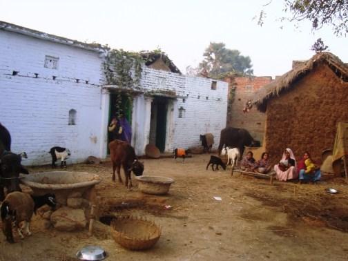 Shankar Bigha Village