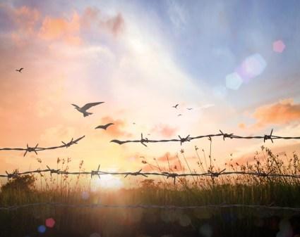 Kies voor vrijheid