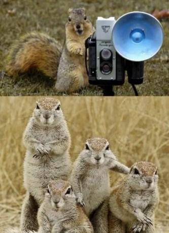 Um retrato de família é sempre importante!