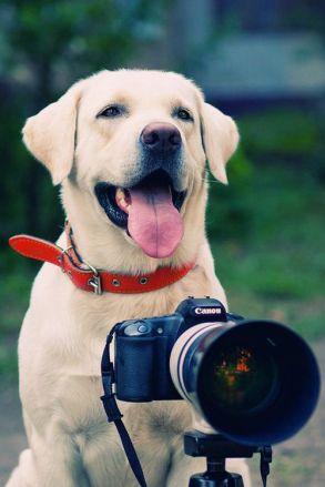Abre um sorriso assim igual ao meu pra ficar bem na foto!