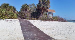 Spoil Island Project - Friends of Spoil Islands