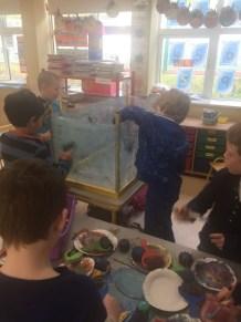 Making Aquarium SI 2018 - 05