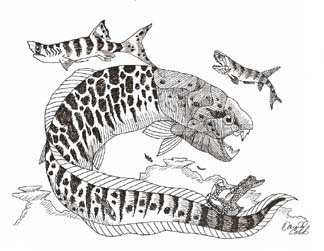 Devonian fish Dunkleosteus