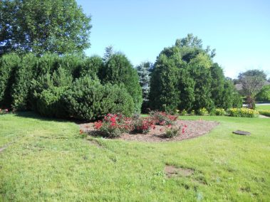 commercial-landscaping-rockford-machesney-park-il-9