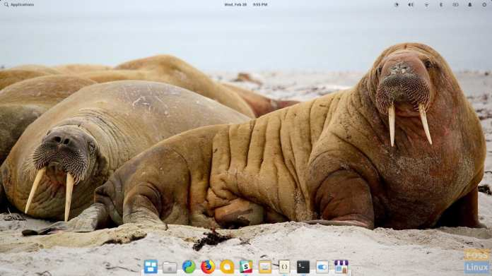 desktop OS 5.0 Juno elemantaris