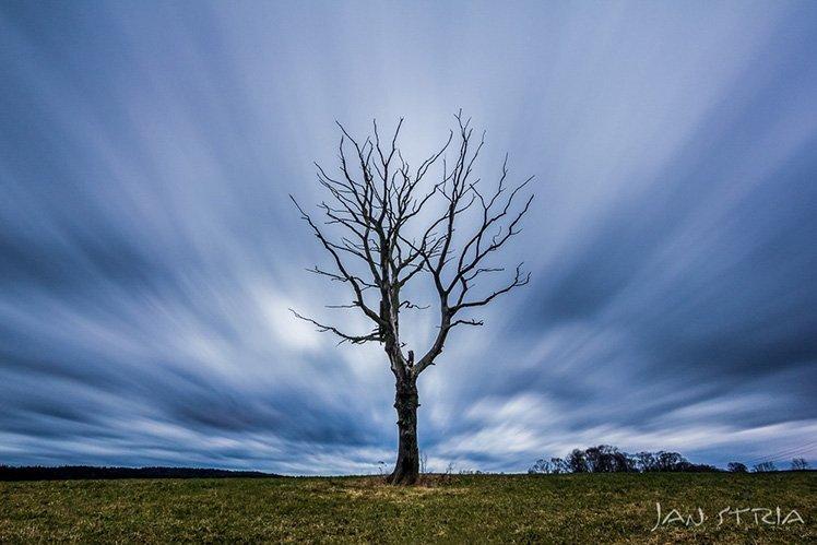 Photo by {link:https://500px.com/photo/95445347/windy-day-by-jan-stria}Jan Stria{/link}