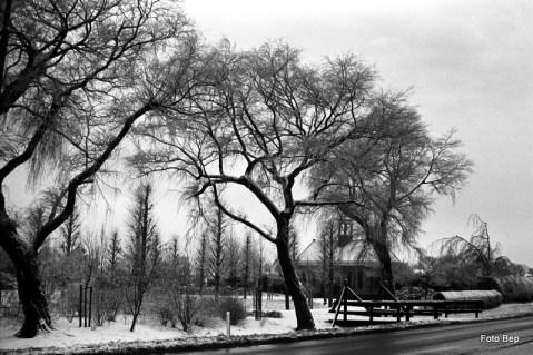 Begraafplaats Woubrugge in de winter.