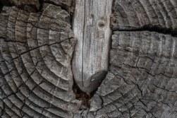 Holz Balken Moni-11