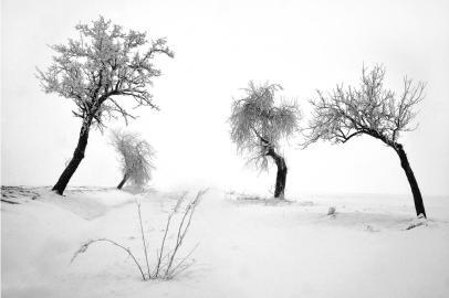 Karl Eißner, White Silence