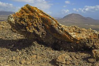 Lanzarote - Guenther Holzinger