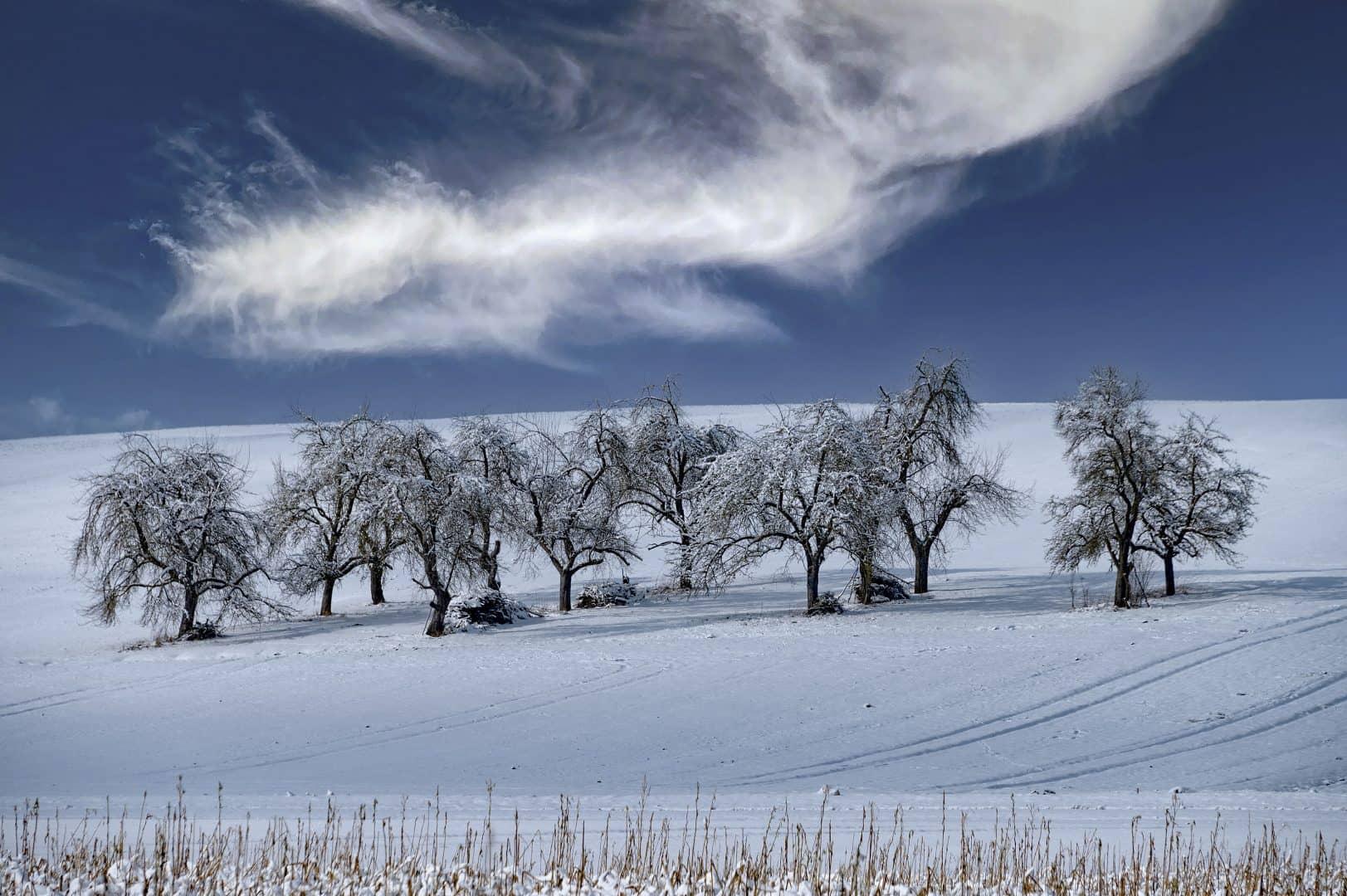 Winterlandschaft - von Johannes Heumann