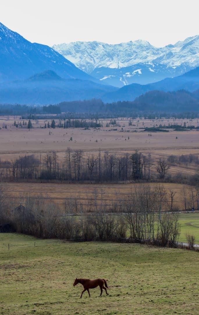 blaues Land - von Volker Birmann