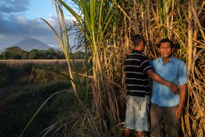 Walter Arsenio Rivera, 29, poses with his father, Antonio Arsenio Rivera, 58, in the cane fields of Chichigalpa, Nicaragua on Jan. 6, 2013. Both men suffer from chronic kidney disease. La Isla is dedicated to fighting the epidemic of kidney disease in Chichigalpa, Nicaragua. They work with health officials and researchers to provide better medical treatment for the sick and to study the causes of the epidemic.  They support and organize workers and their families through education programs, health initiatives, and economic development projects.  And we are committed to breaking the silence that shrouds this epidemic.