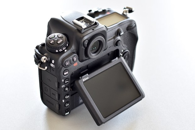D500_Display