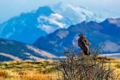 Fotoexplorer-Marcio-Cabral-ARG-e-CHI-Patagonia-049