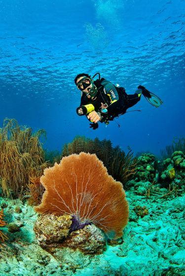 Fotoexplorer-Marcio-Cabral-HOL-Bonaire-003