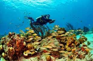 Fotoexplorer-Marcio-Cabral-HOL-Bonaire-007