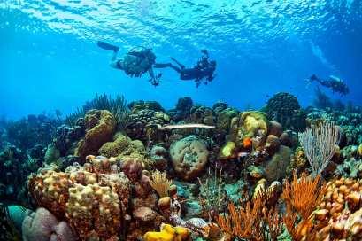 Fotoexplorer-Marcio-Cabral-HOL-Bonaire-017
