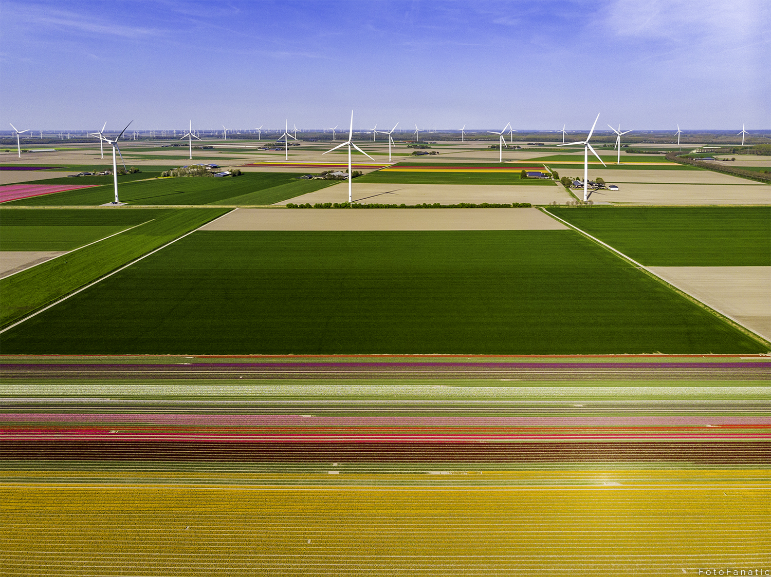 Dutch aerial landscape windmills flower fields