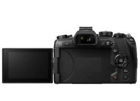 Olympus OMD E-M1 Mark II + 12-40mm F/2.8 M.Zuiko Digital Pro-3991