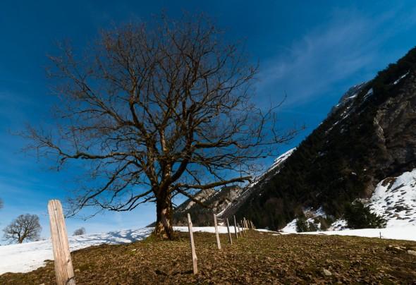 Obersee bei Näfels