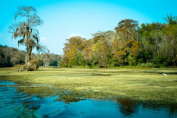 Florida - Wakulla Springs