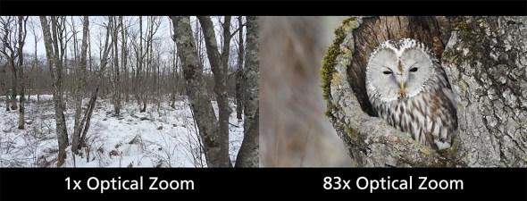 Nikon Coolpix P900 Vergleich 1 und 83 fach Zoom