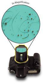 SensorScope