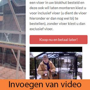 Invoegen-video