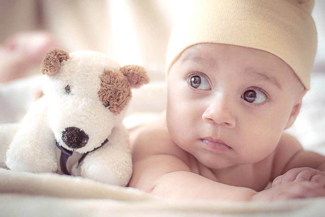 newborn Viborg