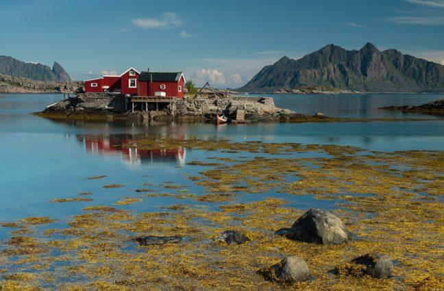 Rode vissershuisjes op de Lofoten