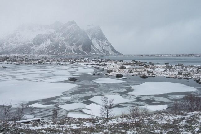 Winterse landschappen met ijsschotsen